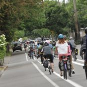 Business district welcomes carfree customers with 'Walk Williams' event