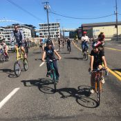 Family Biking: How to Pedalpalooza with the little ones