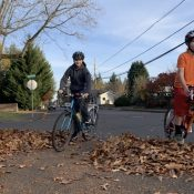 Family Biking: Kids + leaves = fun!