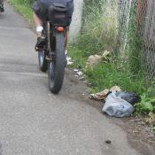 SOLVE I-205 Bike Path Cleanup