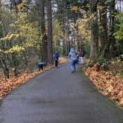 The cleanest bike path is in Vancouver thanks to a bike club's adoption