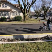 'Green streets' and the fight against vehicular violence