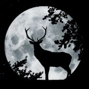 Buck Naked Full Moon Ride