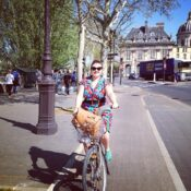 Dreaming of a truly public bike system like the one I used in Paris