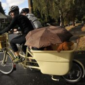 Family Biking: There's no such thing as bad weather